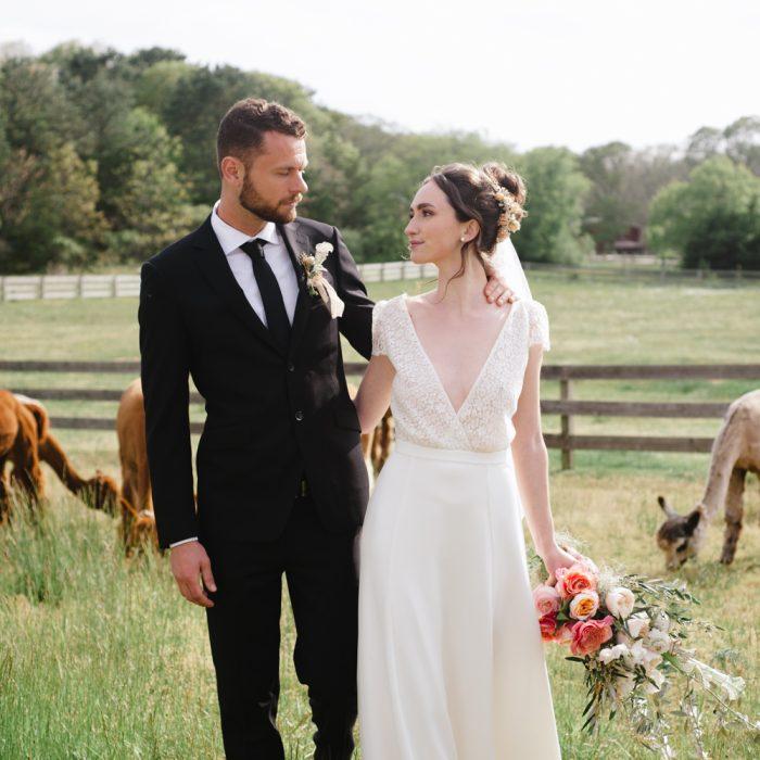 Martha's Vineyard, Island Alpaca Wedding Editorial